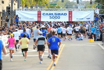Carlsbad Events / From the LPGA Kia Classic to the Carlsbad Marathon, there's always something happening in Carlsbad, CA