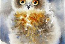 barnowl & owl