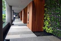 Landscape Corridor