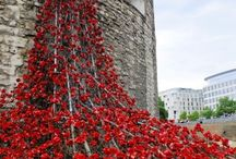 LONDON TOWER POPPIES