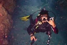 Diving in Roatan / Roatan and the Bay Islands one of the most desirable diving destinations in the world.