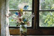 Flowers / by Kelsey Nichols