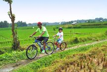 Bali Tours With Kids