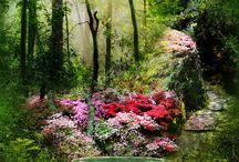 C.Garden mysteriers