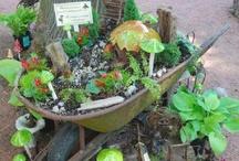 Fairy garden ;)