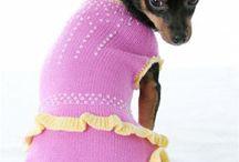 Dog Sweaters & Hoodies