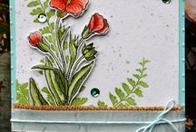 Butterfly Basics - Stampin' Up!
