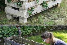Jardinage / Idées de jardinage