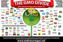 The GMO Divide / On Nov. 4, in the most expensive ballot measure campaign in Oregon history, voters will decide whether to force food manufacturers to label their products that contain genetically modified ingredients sold in the state. embed image here : http://www.ordinaryvegan.net/gmodivide/ / by Ordinary Vegan