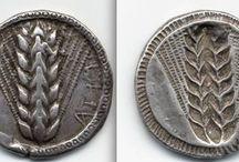 coin / coin