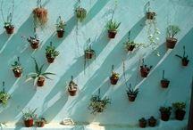 Garden / Ideeën