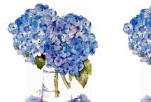 flores para decoraçao