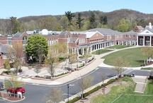 Campus / Photos of our campus.