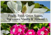 A - Fragrant Plants / by Betsy Pedersen