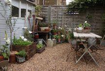 New Gardening Ideas
