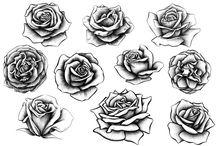 tatto rosas