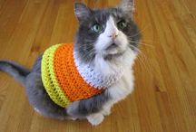 Crochet for the fuzz-balls! / by Melinda M