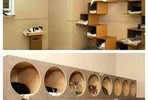 Change Makers Animal Sanctuary