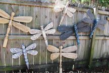 Dragonflies of every kind