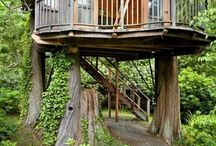 tree house/home