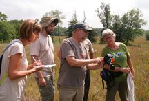 FPWC Citizen Scientists / These special volunteers survey specific plant/wildlife populations in Winnebago County, IL which provides important data about population trends in natural and restored areas