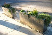 gardening ideas / by Lynn Bowers