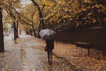 loving Fall ..