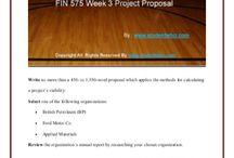 FIN 575 Week 3 Project Proposal