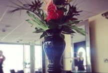 GOLSON salon / Some pictures showing of our gorgeous salon, our beautiful reception flowers and our window dressing skills :)