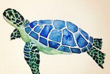 χελωνα θάλασσα