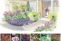 дизайн сада,цветники
