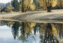 Nature / Sacramento is gorgeous - and these pictures prove it.