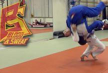 fiore / judo