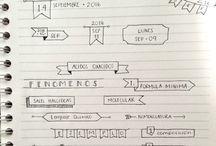 organização de cadernos
