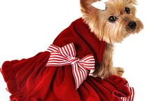 I SEE SPOT - Holidays 2016! / We're EXCITED about the holidays at I See Spot! Fun tanks, cozy pullovers, luxurious dresses, cute scarves/bandanas! Something for every dog!