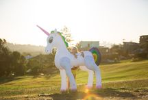 Inflatable Unicorn! / This is the home of the magical giant 6ft Inflatable Unicorn!