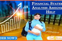 Financial Statement Analysis Assignment