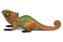 David Hernandez Chameleon