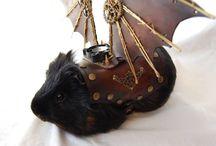 Guinea Pig - Costumes