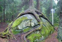 Чудеса природы / Уникальные, необычные, удивительные явления, предметы, созданные природой...