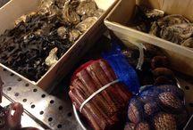 Pesce dell'Adriatico / Ecco il pesce che usiamo per realizzare i nostri piatti. Sempre fresco e appena pescato nel nostro mare Adriatico.