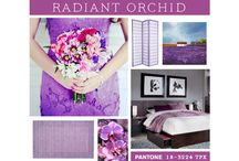 Radiant Orchid-Pantone Color of the Year 2014