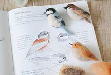 Bird / Bird