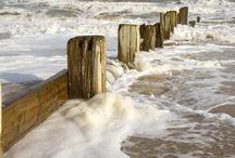 Beach / by Lilly Krupsha
