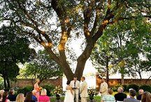 Norfolk VA Wedding Venues / Your complete list of Norfolk VA Wedding Venues and surrounding area. A helpful list for Norfolk Va destination brides.