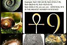 Quest: Numerologie
