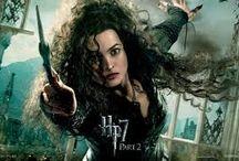 Potter / Harry Potter