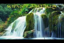 sonidos de la naturaleza