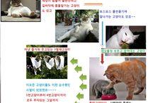 이브알바 / 유흥 구인구직 및 여성 고소득알바 정보