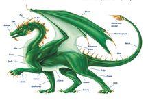Анатомия драконов
